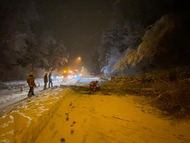 Technische Hilfeleistung, Weststrasse, beide Fahrbahnen blockiert durch einen Baum