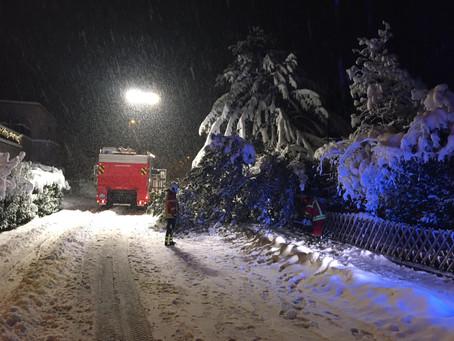 Technische Hilfeleistung, Rietckerstrasse, Baum blockiert Fahrbahn