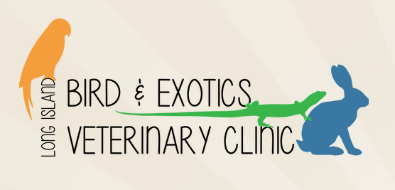Logo | Long Island Bird and Exotic Pet Vet