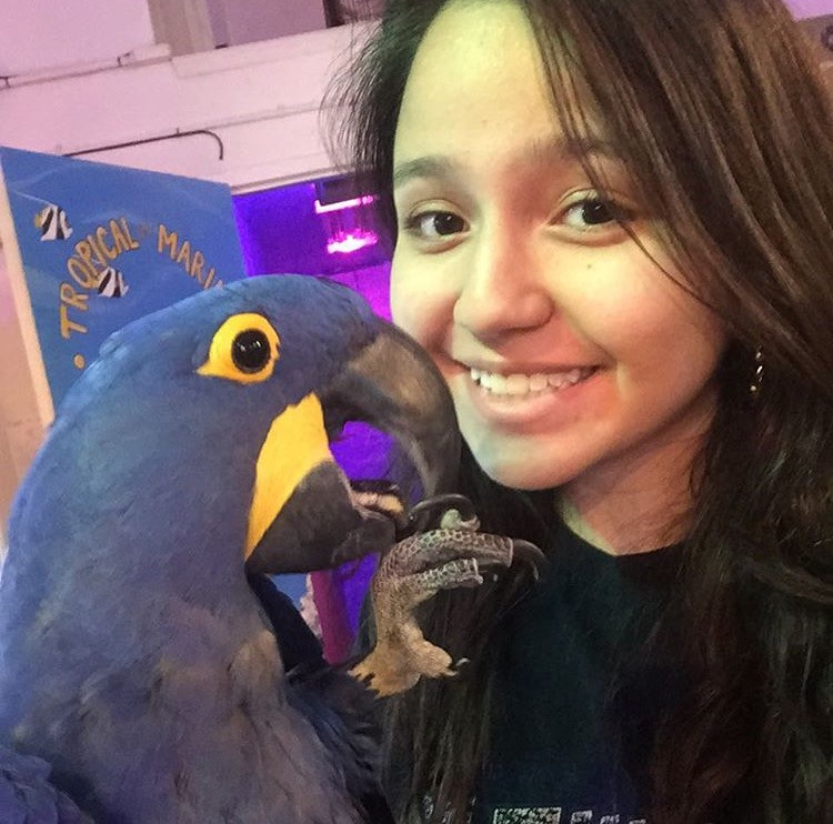 Veterinary assistant holding parrot and Avian and Exotic Pet Vet