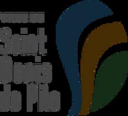 VILLE DE SAINT DENIS DE PILE