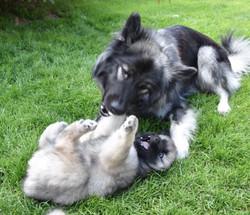 Die Mama macht Fusspflege