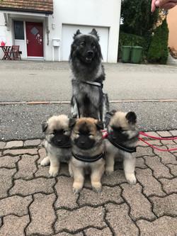 Familienfoto ohne Papa Ayk, siebte Woche