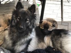 Mami Ishani mit Ayko