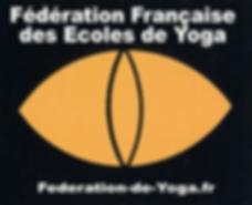 Logo FFEY