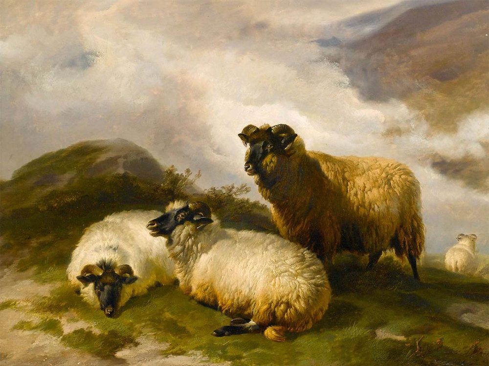 Mountain Sheep by Thomas Sidney Cooper