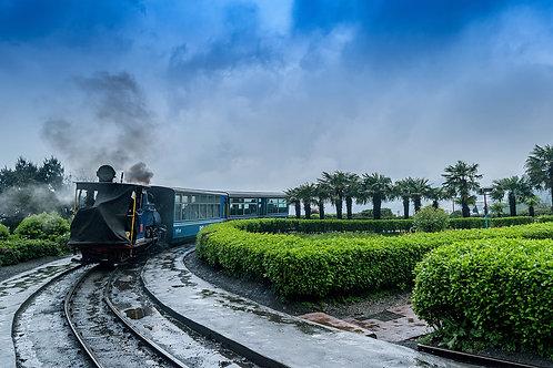 Darjeeling & Gangtok