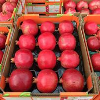 Pomegranates ready for market