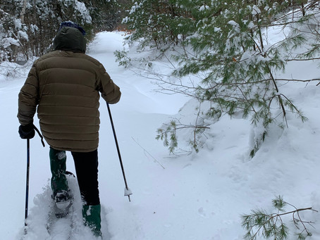 DATE CHANGE: Snowshoe Hike under the Snow Moon!!