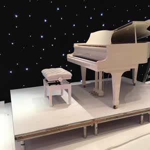 Grand Piano professional removers