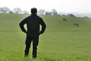 Crise agricole : les raisons de la colère (07/03/16)