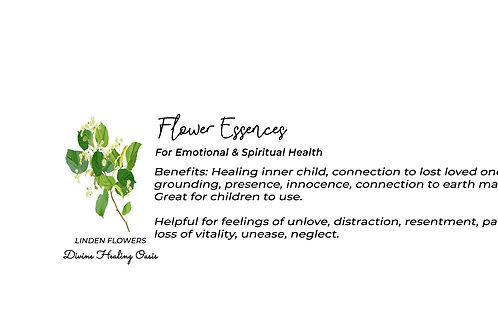 Linden Flower Essences