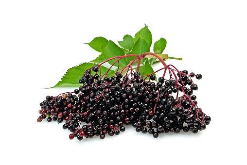 elderberry-pies-fruit-pies-elderberry-pi