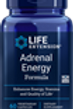 Adrenal Energy, Life extension