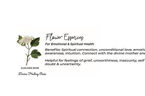 Guelder Rose Flower Essences