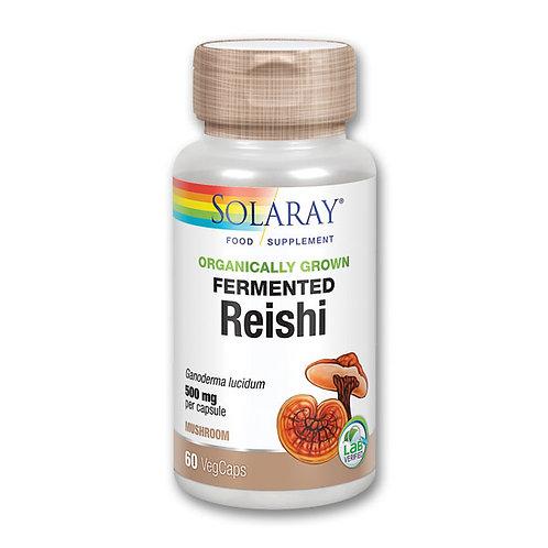 Fermented Reishi