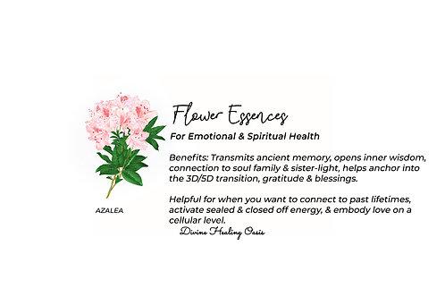 Azalea Flower Essences