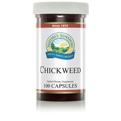 Chickweed, Nature's Sunshine 100 caps