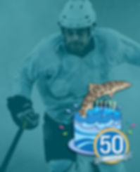 StockHockeyImg.jpg