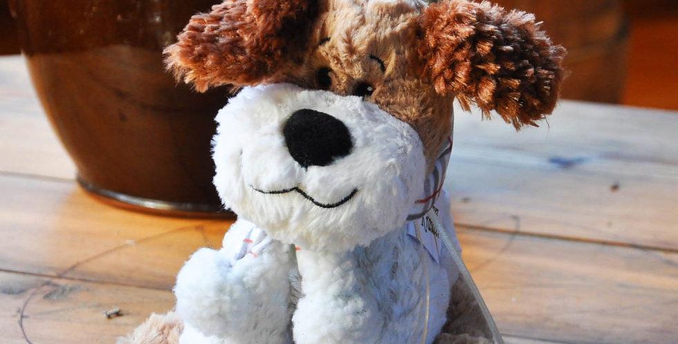 Kräuterhund Buddy