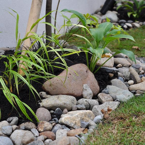 川石と下草