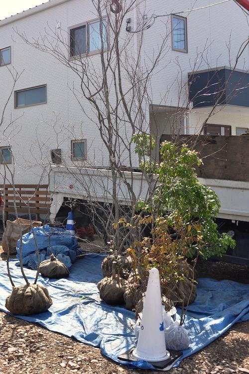 植栽工は前日からワクワクします