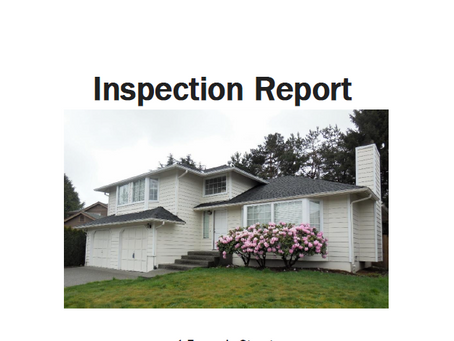 Example Inspection Report