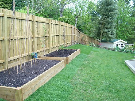 Kitchen Garden Project