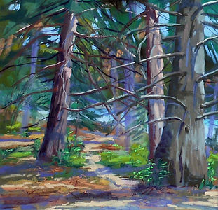 Paint-the-Lake-Trail-at-Burnt-Mill-Beach