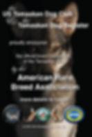 Tamaskan Dog recognized ARBA American Rare Breed Association