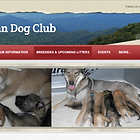 Tamaskan puppy puppies litter official club breeder breeders list listing