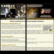 puppy mill sites comparison Yadkin Wolf Den Right Puppy Kennel Blustag Tamaskan My Shiba