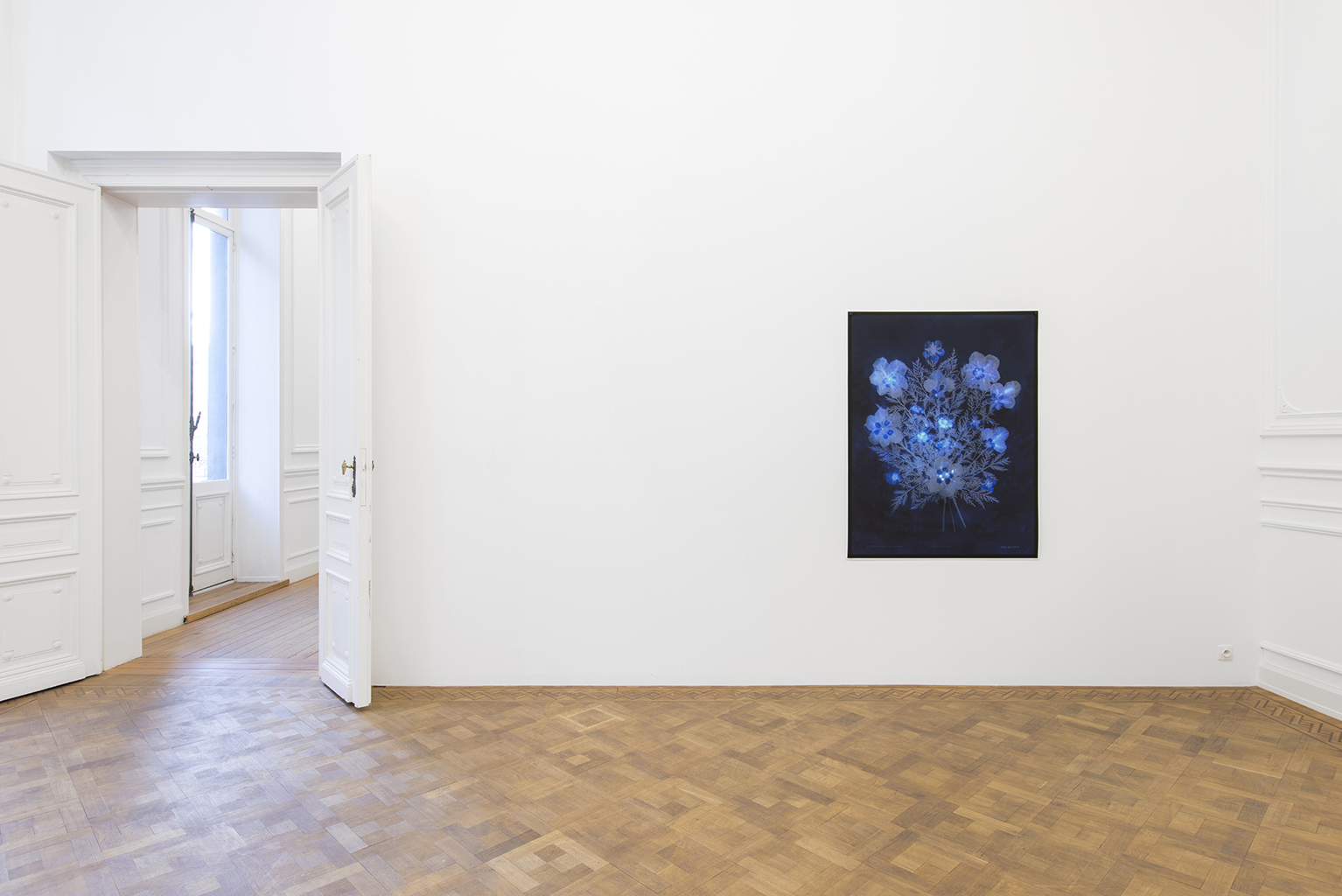 Lilies of the Field, Dvir Gallery