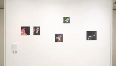 """Installation of my work """"Presence/ Absence"""""""