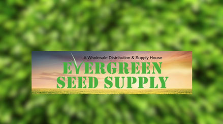About Evergreen Seed Supply