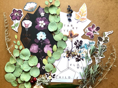 Nature Assemblage as a Window to Your World—by Bridget Steed