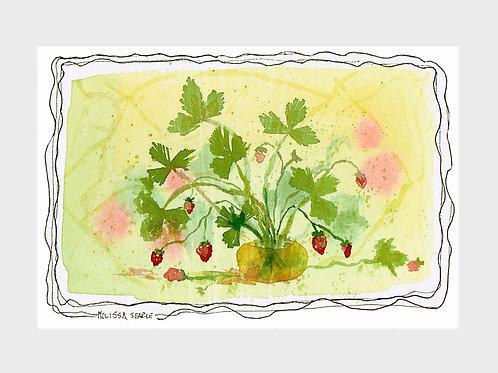 Wild Strawberry • Watercolor Print
