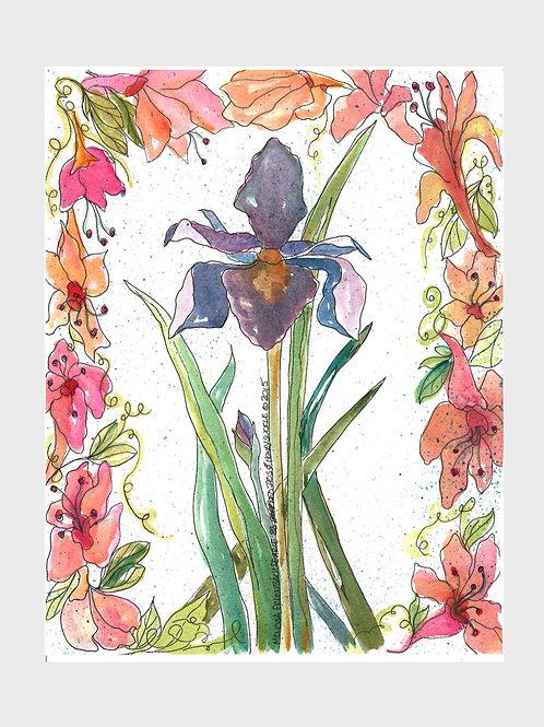 Iris & Honeysuckle • Watercolor Print