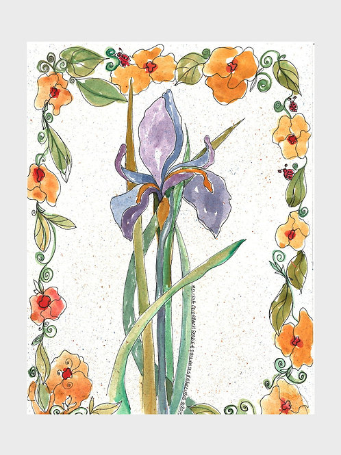 Iris & Narcissus • Watercolor Print