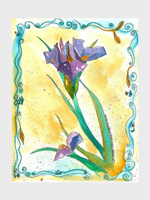 Iris Solo • Watercolor Print