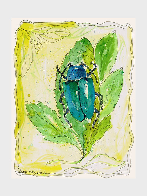 Garden Beetles • Dogbane Beetle • Watercolor Print
