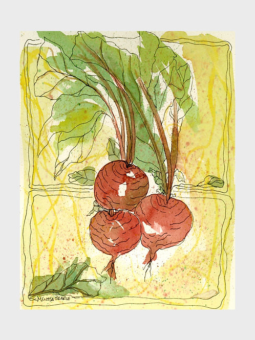 Bunch of Beets • Watercolor Print