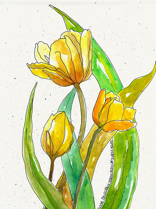 Sunrise Tulips • Watercolor Print