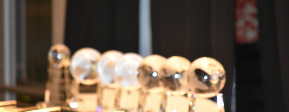 Trophies & Awards.JPG