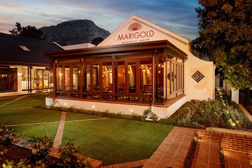 Marigold 3_Charles Russell.jpg