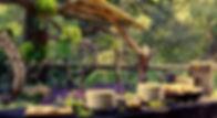 _MG_0305 - Copy_edited.jpg