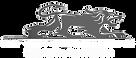 sa-vans-transparent-logo-600_edited.png