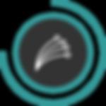 FibreAsset 26_3x.png