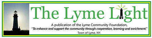 Lyme Light header