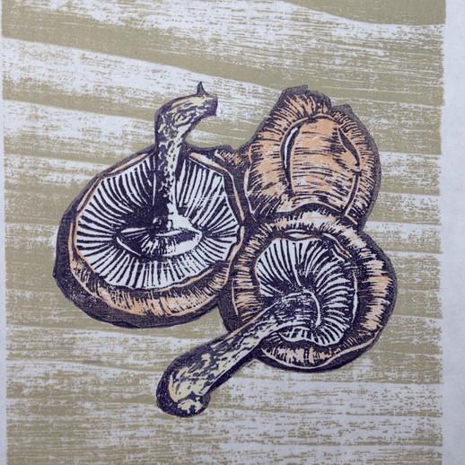 Mushroom Woodcut.jpg